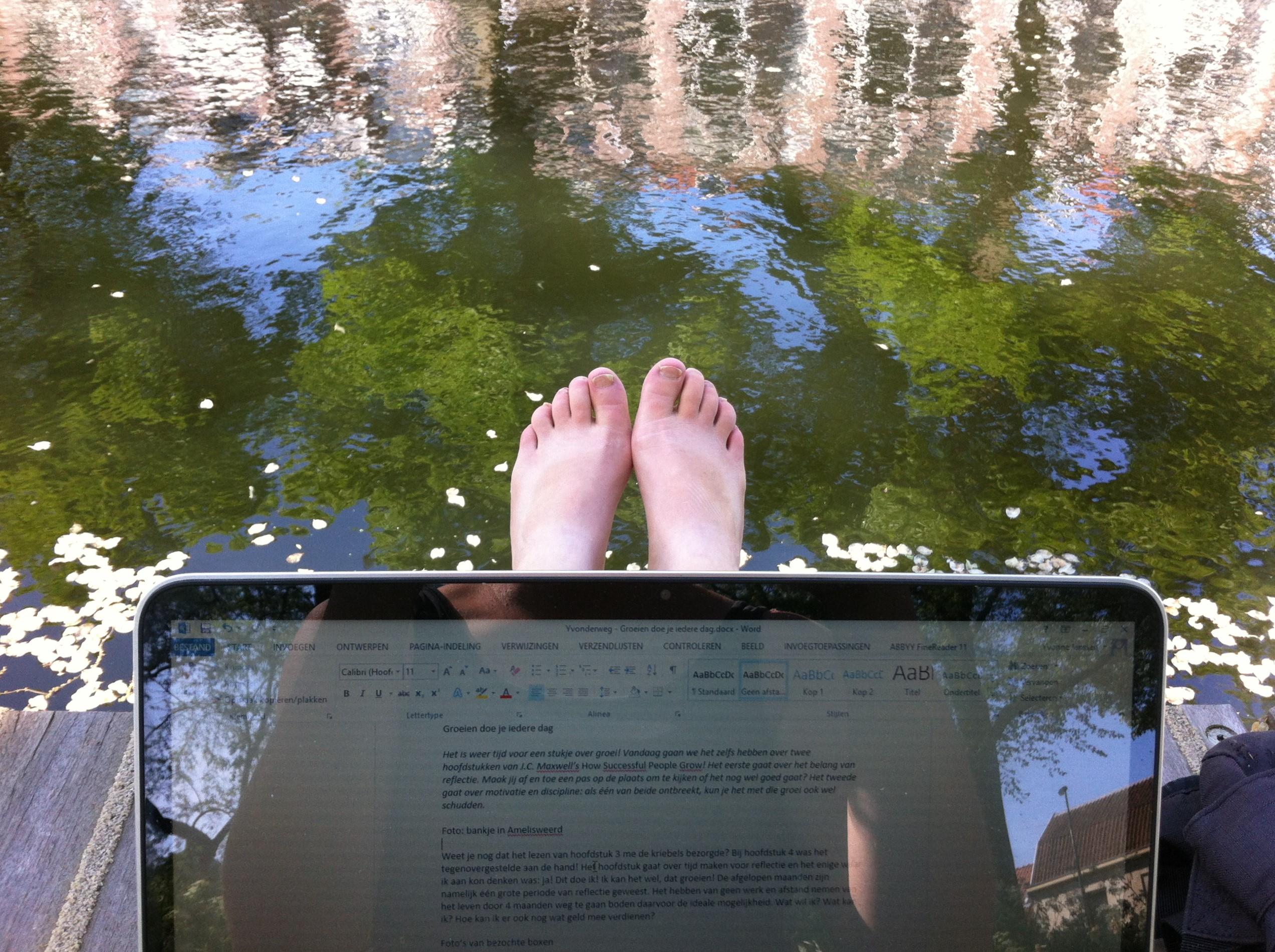 Bloggen in het park