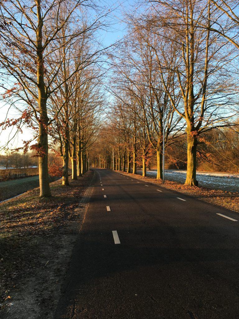 Mereveldseweg Utrecht laagstaande zon ochtendzon winterlandschap