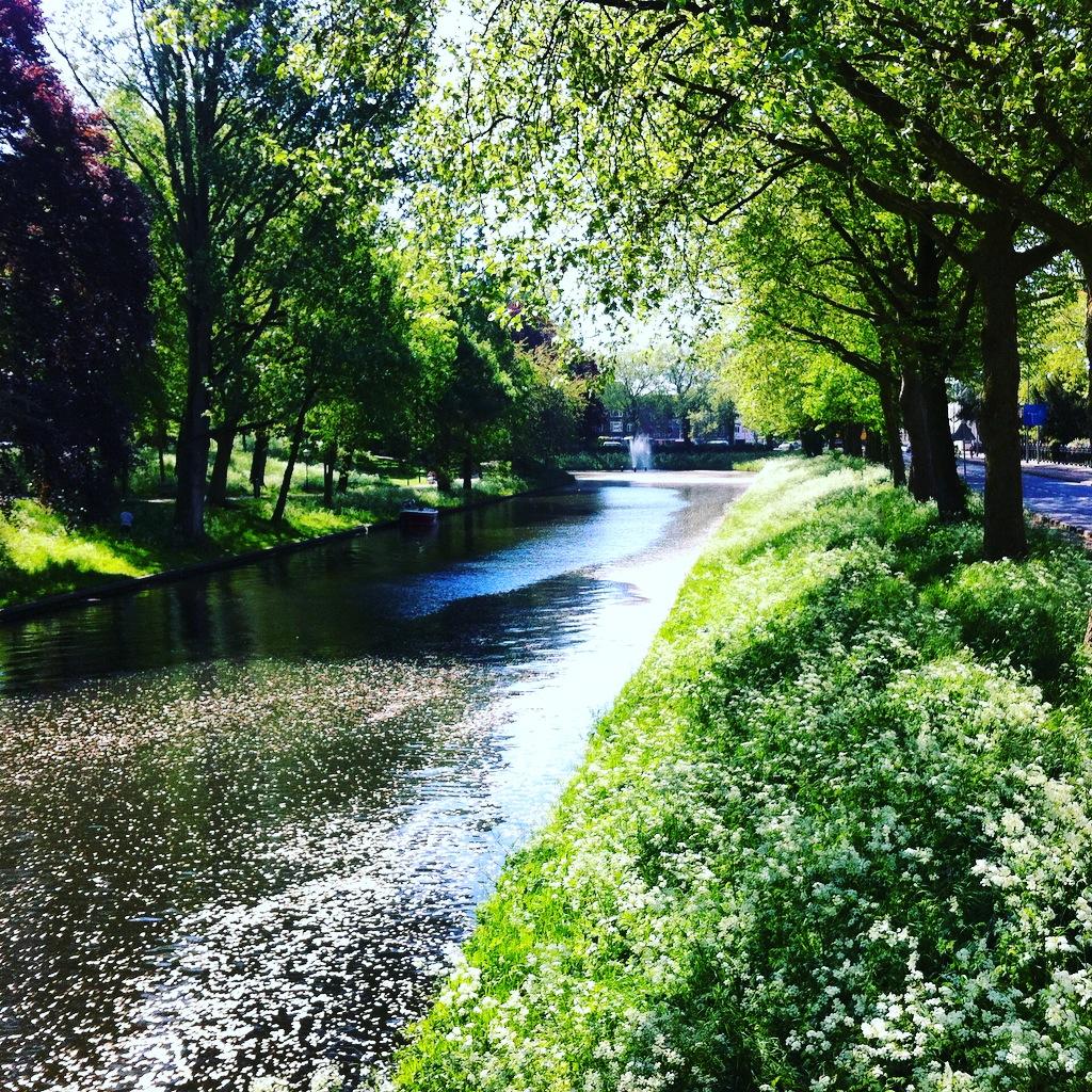 Catharijnesingel Utrecht lente groen