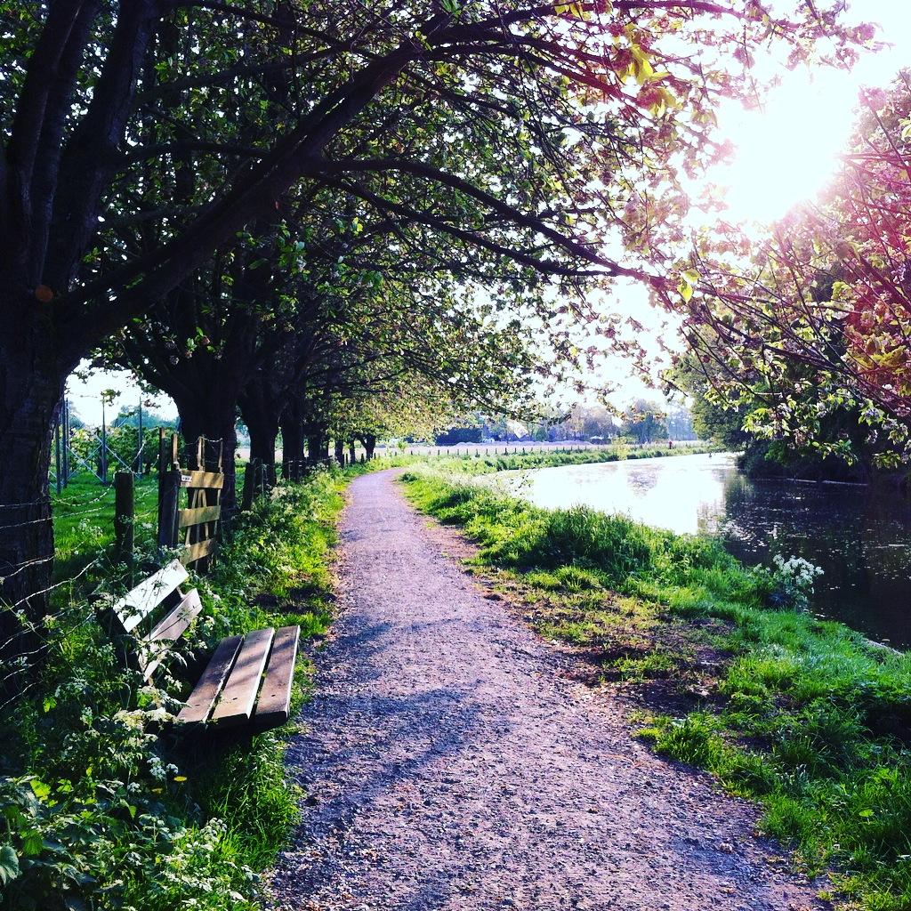 Yvonderweg - Groeien doe je elke dag - Bankje Amelisweerd Utrecht